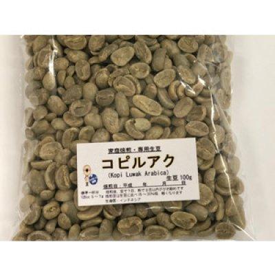 画像1: コピルアク 100g 世界一高価なコーヒー