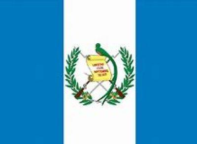 画像1: グアテマラ SHB  (農園指定)