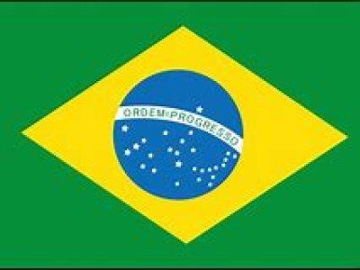 画像1: ブラジルサントス ジュヌイーブルボン