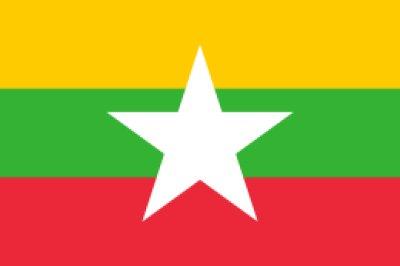 画像1: ミャンマー アマヤーG1(国内初!現地貢献豆)