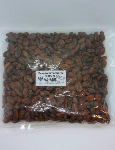 画像1: 直輸入!ウガンダ産カカオ生豆(1kg お得価格)*必ず商品説明をご確認の上ご購入くださいませ。 (1)